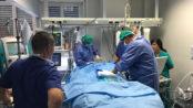 Caso di legionellosicomunitaria,all'ospedale diTernidonna con gravissima polmoniteviva grazie all'ECMO